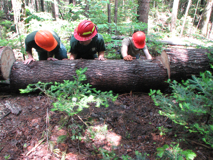 USFS and Wilderness Volunteers move a large portion of a cut log in the Pemigewasset Wilderness.